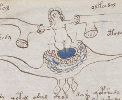Manuscrito de Voynich Online